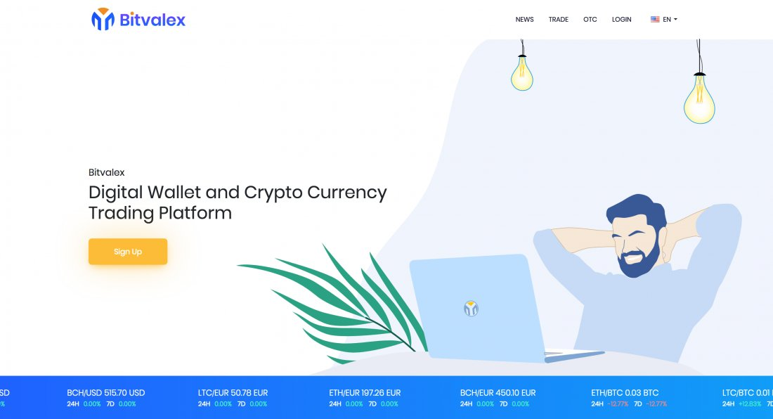 bitvalex.com